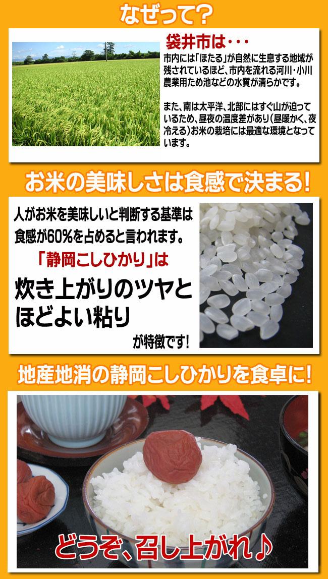 お米の美味しさは食感で決まる!地産地消の静岡こしひかりを食卓に!